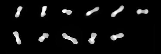Eleven images of the asteroid Kleopatra, viewed at different angles as it rotates through space