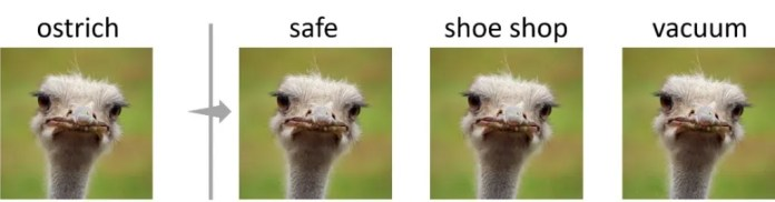 ostrich adversarial example