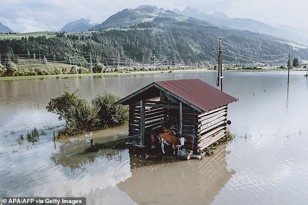 Researchers say floods like those this year in Europe (pictured in Kaprun, Austria in July) that killed more than 200 people and caused billions of dollars in damages are now up to nine times more likely because of climate change
