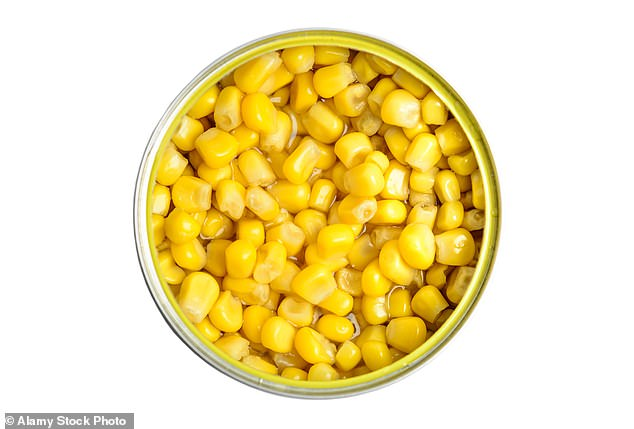 Sweet corn is harvested while its still immature and has a short shelf-life: Itmust be eaten fresh, canned or frozen, before its kernels become tough and starchy