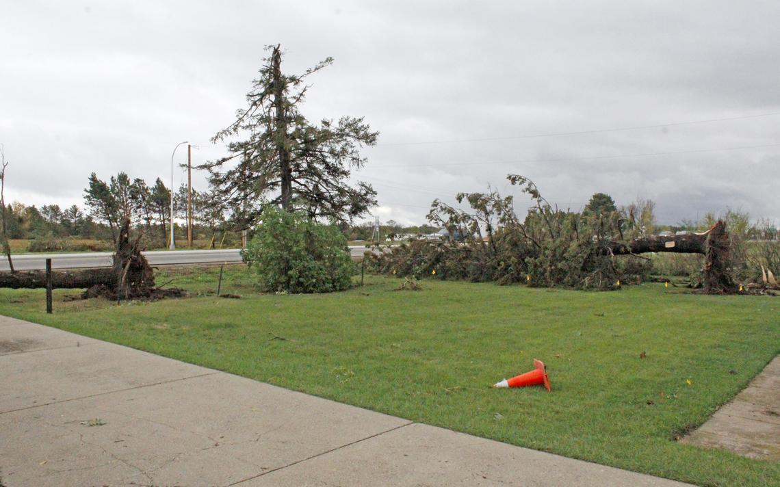 Saturday night's tornado touchdown started in Dick Carpenter's yard at 1603 S. Park Ave., where it uprooted two large trees, snapped another tree and did other damage before crossing Industrial Park Road to hit Faithbridge Church and Park Rapids Ford. Robin Fish / Park Rapids Enterprise, Sunday, Oct. 10, 2021