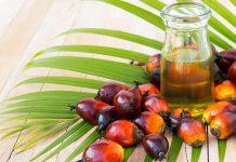 picard slutar med palmolja