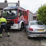 https://usercontent.one/wp/www.buurtpreventiehiambacht.nl/wp-content/uploads/2016/07/20160614-5016-WEB-150x150.jpg