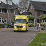 https://usercontent.one/wp/www.buurtpreventiehiambacht.nl/wp-content/uploads/2016/07/20160628-7014-WEB-150x150.jpg