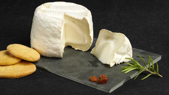 queso cremoso de cabra