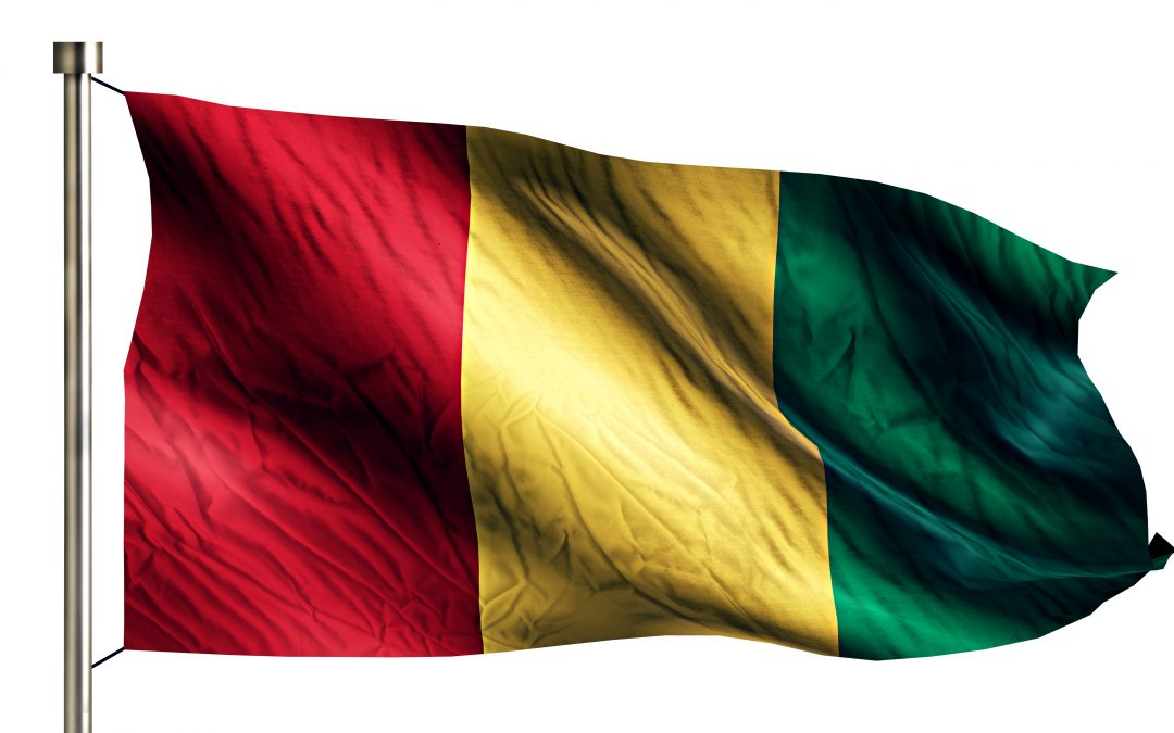 Photo drapeau de la Guinée Baga Studio