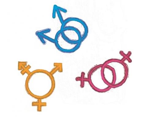 Homosexualité et transidentité