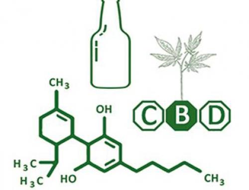 Cannabis, alcool: on en parle?