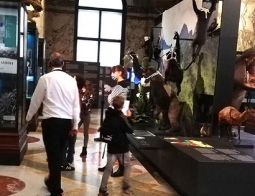 Le Musée de Tervuren revisité …
