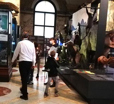La visite de l'Africa Museum à Tervuren était une étape importante du travail de mémoire proposé par le CAL/Luxembourg. L'occasion de revenir sur la colonisation du Congo dans le contexte des 60 ans de l'indépendance de la RDC.