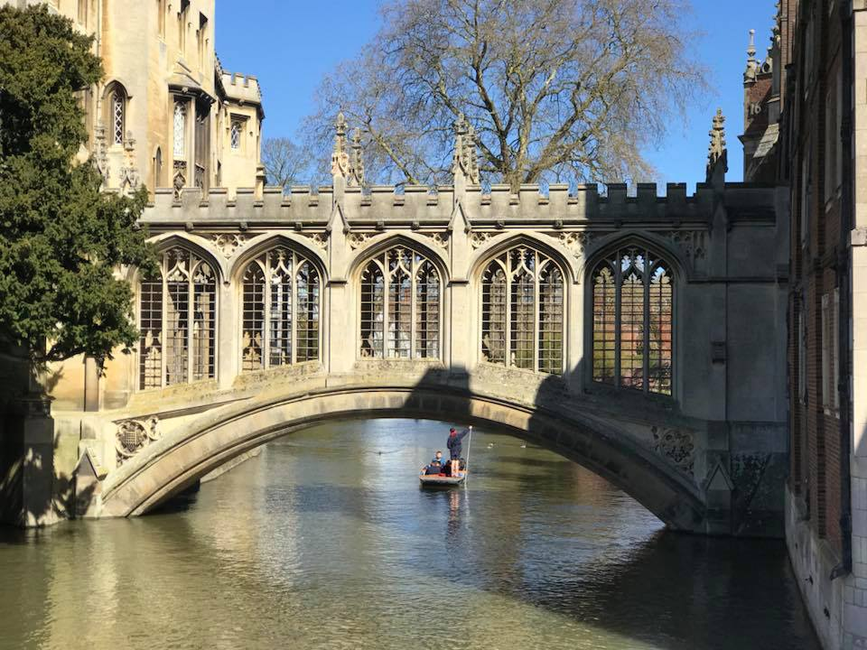 Cambridge Oxbridge Admissions University mentor tutor A levels GCSE
