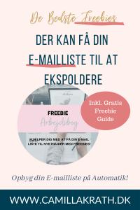 Sådan kan du opbygge din e-mailliste med en Freebie