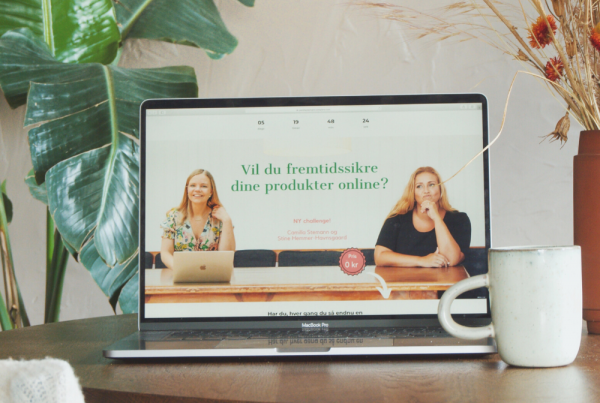 Online salg forløb