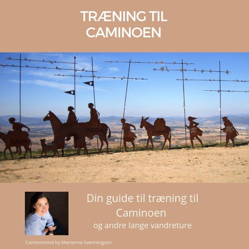 Træning til Caminoen