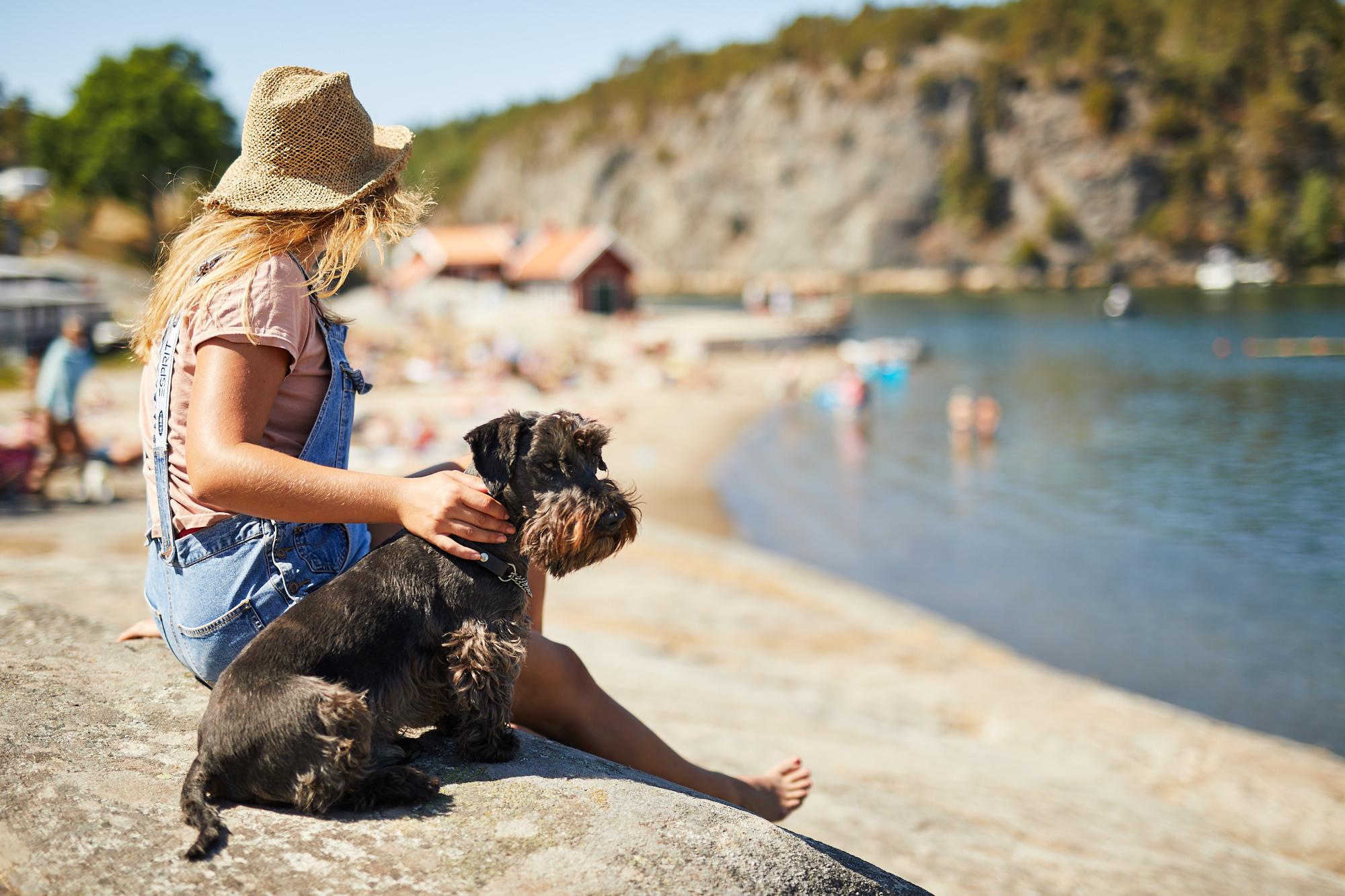 ramsvik-hunnebostrand-hund