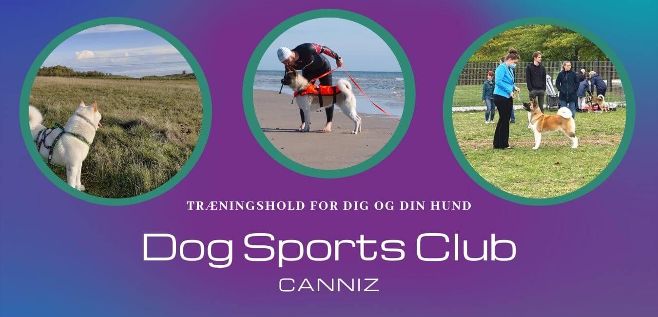 hundetræning nordjylland