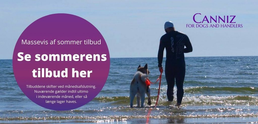 Sommer hund afkøle tilbud