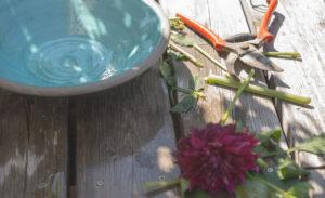 Läs mer om artikeln Min lilla sommarträdgård