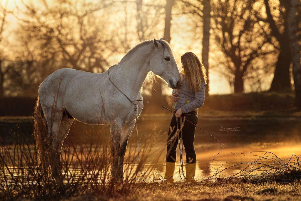 Stilles Miteinander am Morgen, Sonnenaufgang mit Pferd