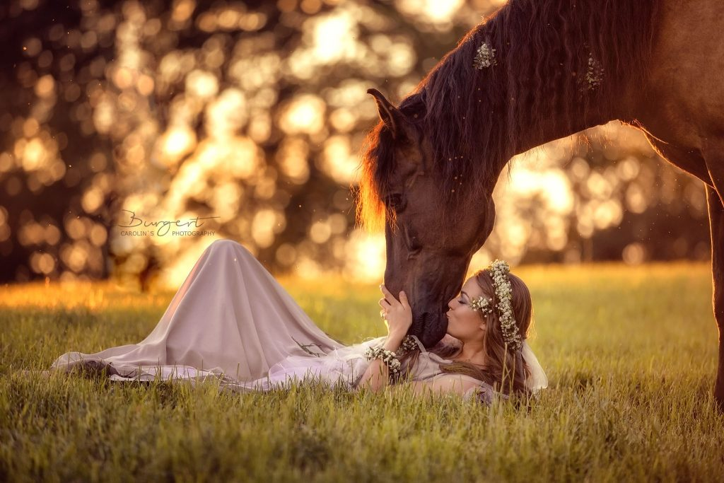 Liberty with Horses - Valeska mit Sillero