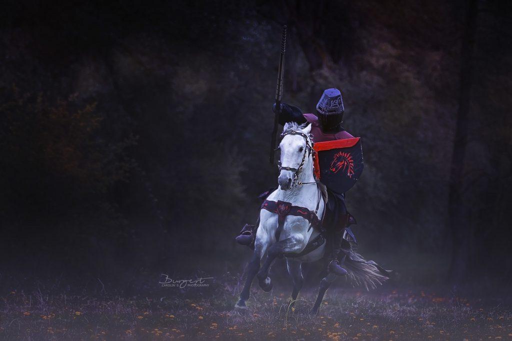 Ritter Kunibert auf dem Weg um seine Prinzessin zu retten...