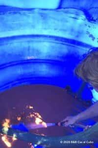 water in de algarve bij B&B Cas al Cubo