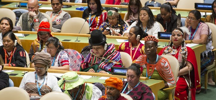 21 May, World Day for Cultural Diversity for Dialogue and Development
