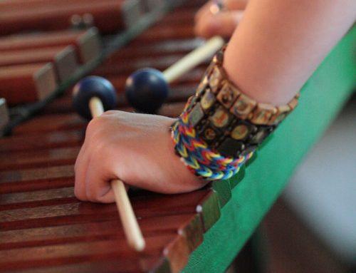 22 maart: Intern Muziekfestijn AFGELAST