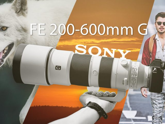 Sony 200 - 600 Review by Cedric Paquet