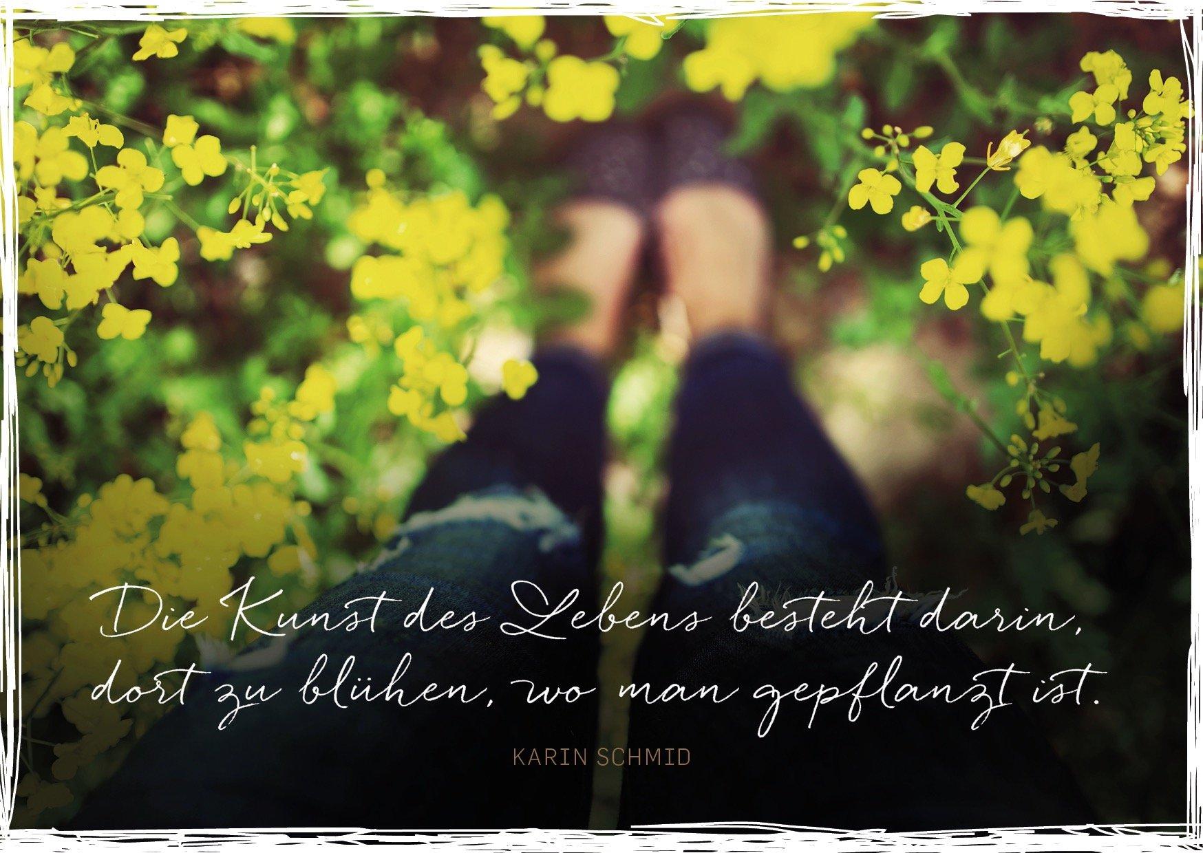 Cartolina postale di Karin