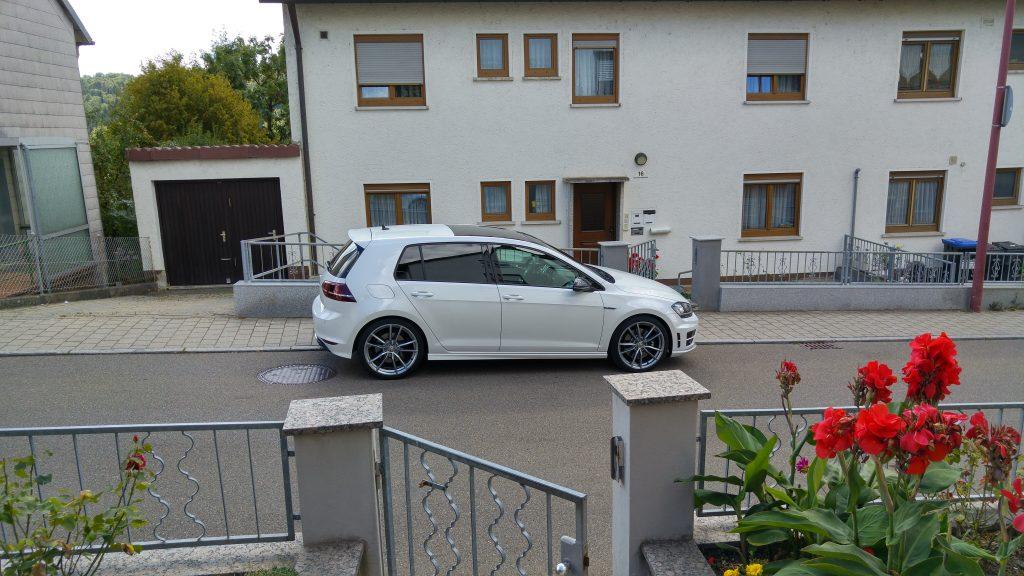 Volkswagen Golf 7R 300 PS, Flowers