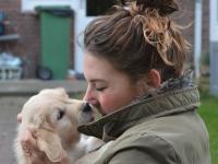 puppytest-deel-1-2