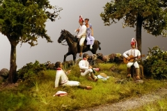 1807-Spaniere-i-Roskilde-2