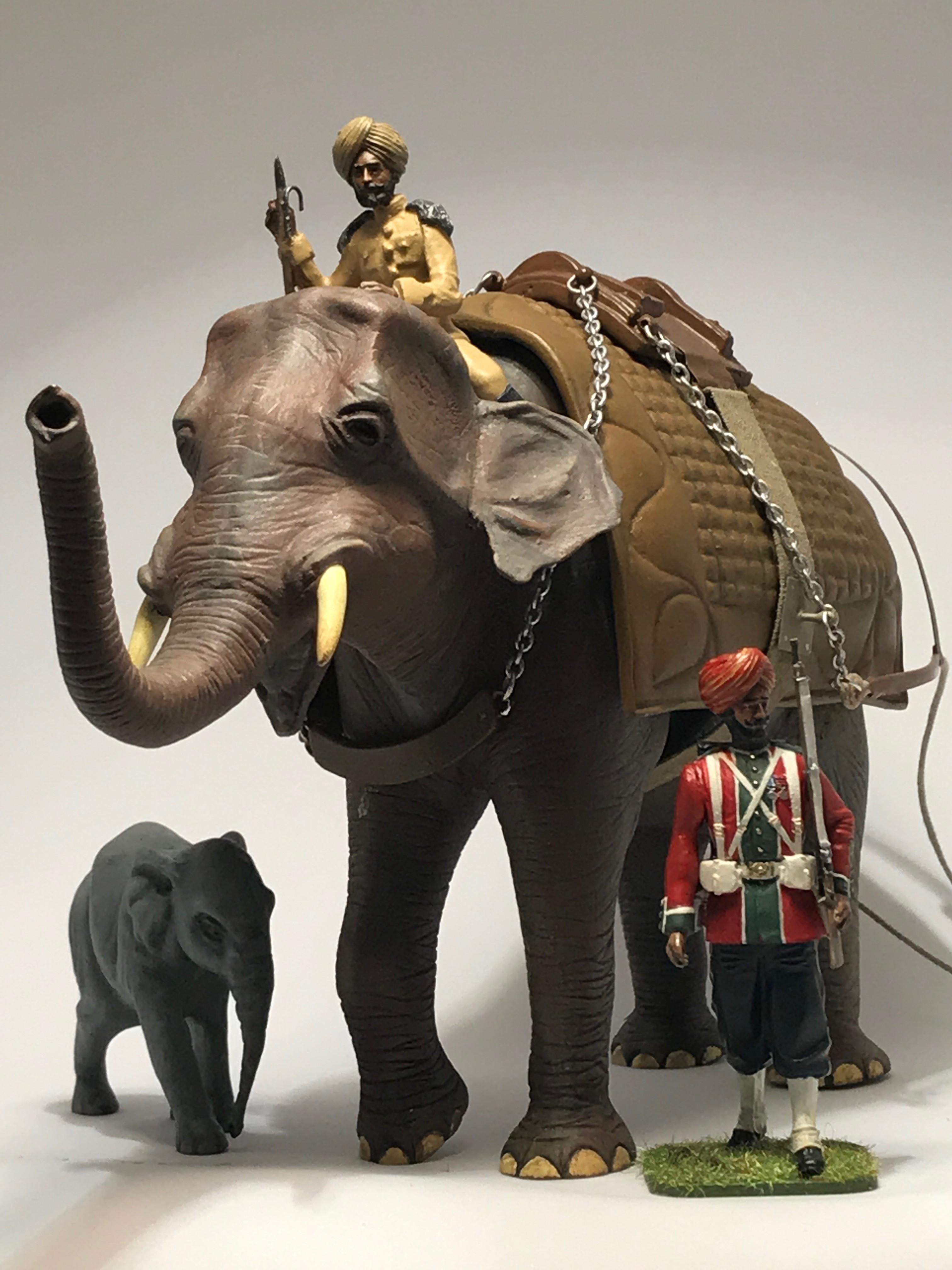 elefant003indien