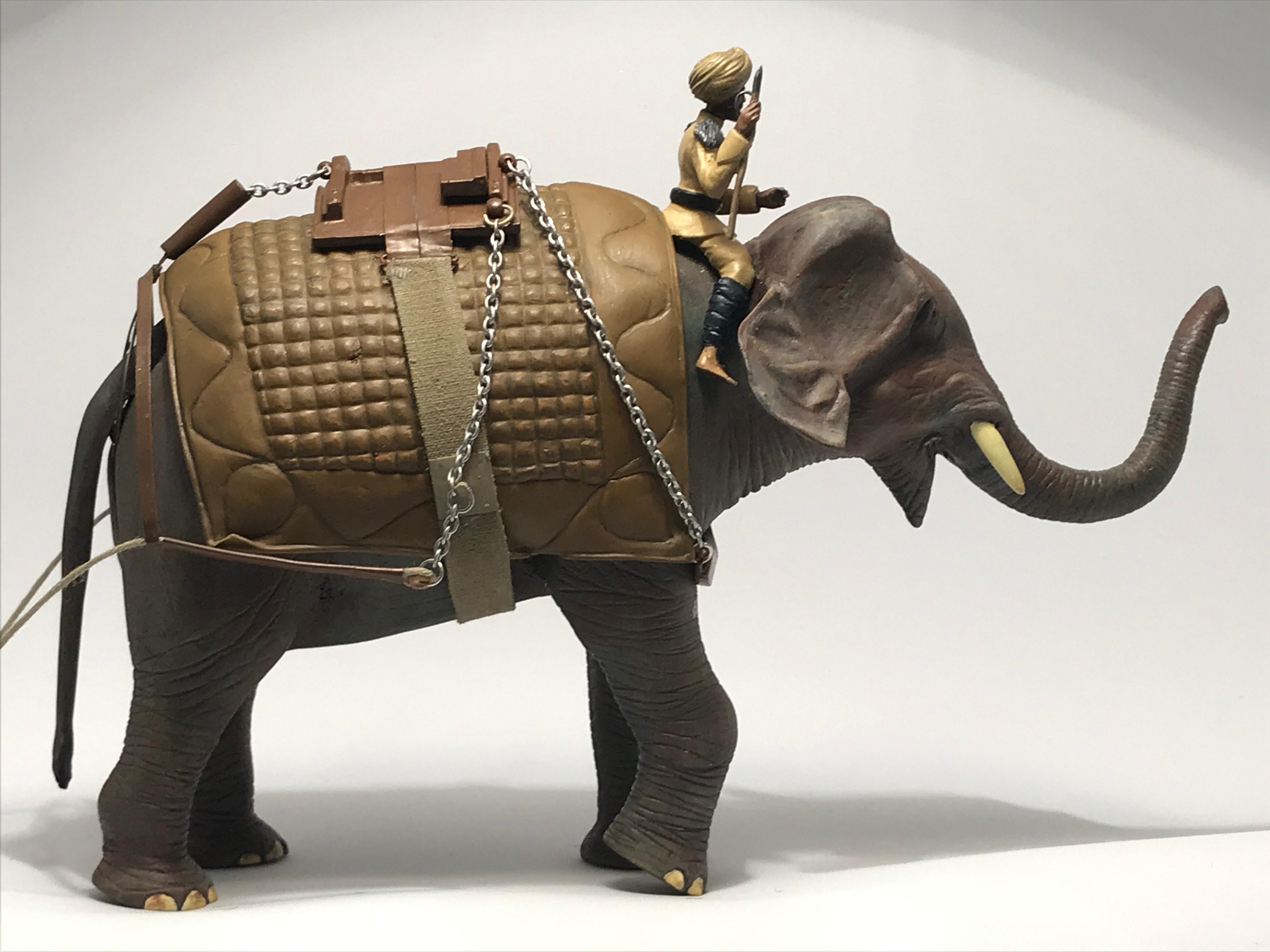 elefant004indien