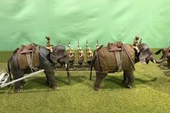 elefant002indien