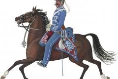 Gardehusarregimentet, sergent 1886