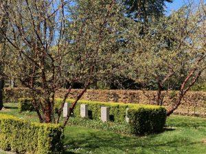 Klaus Bertelsen tager i sin nye bog læseren med på en vandring på aarhusianske kirkegårde blandt udvalgte gravminder fra Anden Verdenskrig. Den kan også læses som bidrag til historien om Aarhus under Anden Verdenskrig. Foto: Møller & Fauerskov