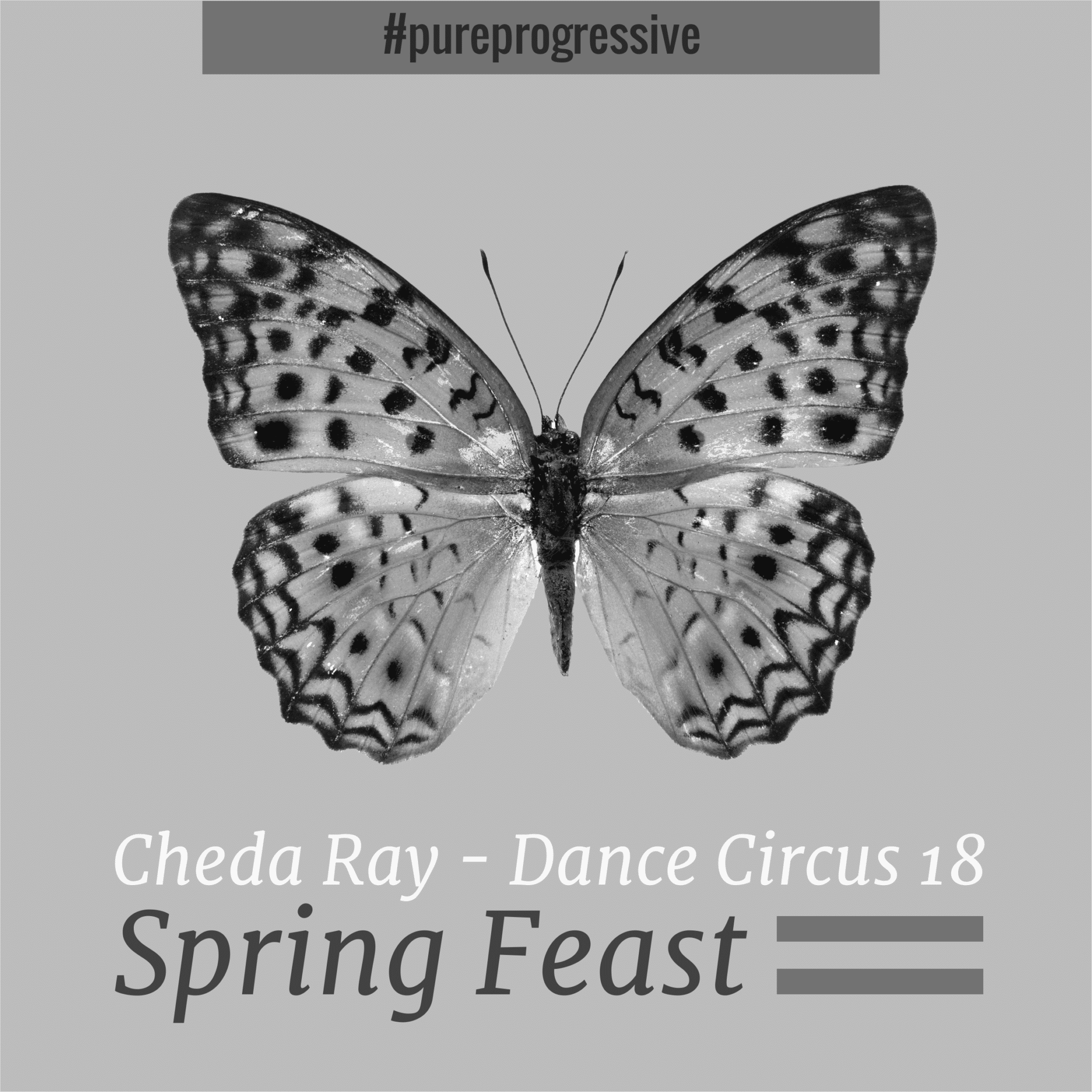 Dance Circus 18 - Spring Feast