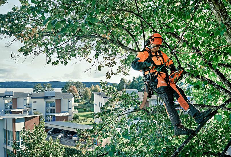 Christiansfeld Maskinservice forhandler alt til professionelt skovbrug og privat fældning af træer.