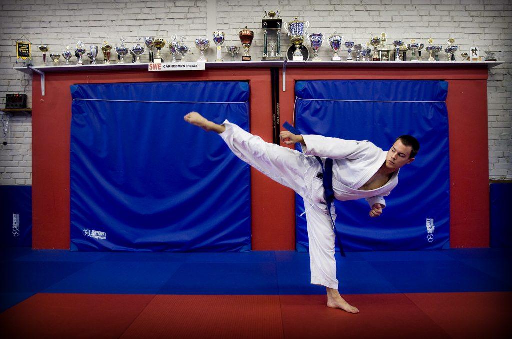 Simon Sköld *** Local Caption *** Simon Sköld, ju-jutsu, tog nyss silver på SM och ska åka på EM i maj