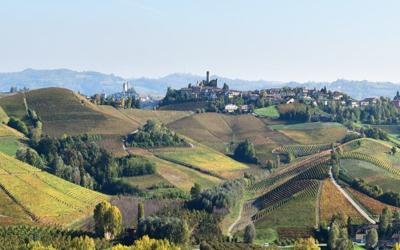 New entry -Planeta winery