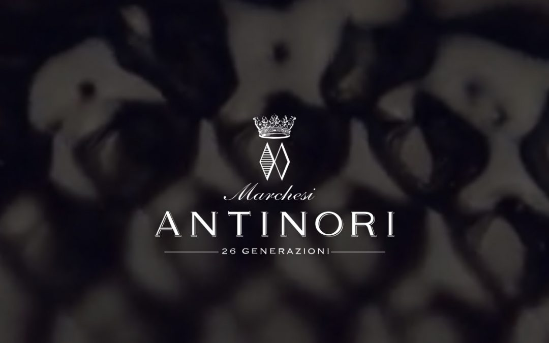 Marchesi Antinori new entry