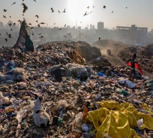 The Plastic Waste Problem of our Linear Economy