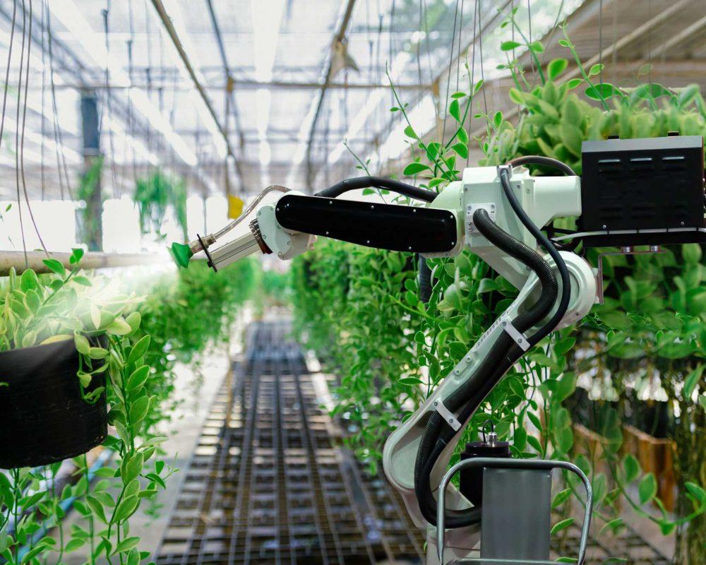 iot farming argriculture