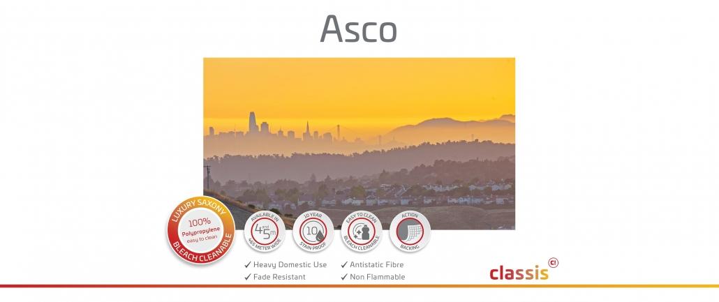 Asco Website 3000x1260px
