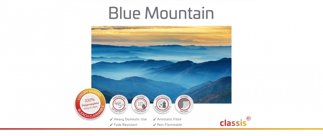 Blue Mountain Website 3000x1260px