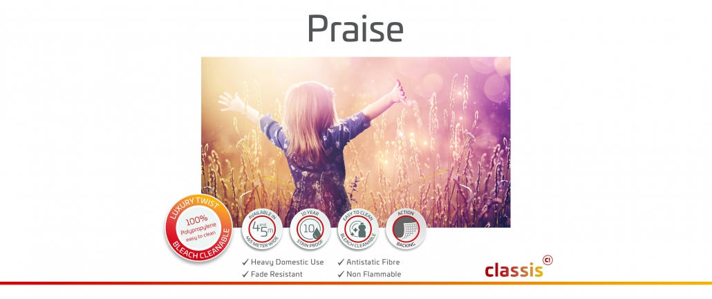 Praise Website 3000x1260px