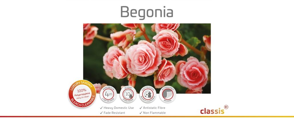 Begonia Website 3000x1260px