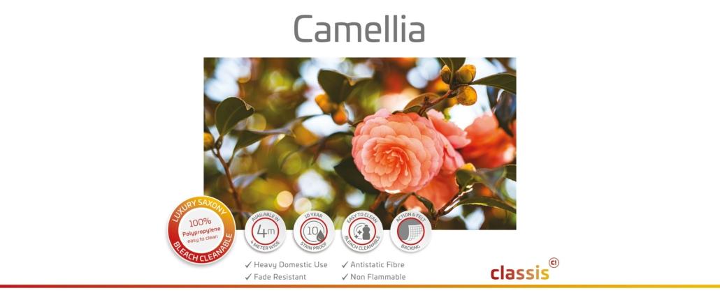 Camellia Website 3000x1260px